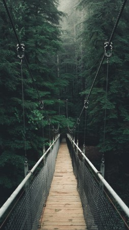 постер подвесной канатный мост хофф есть